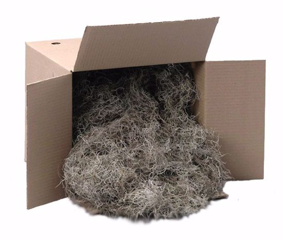 Picture of Spanish Moss - Natural (3 lbs)