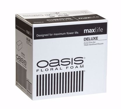Picture of Oasis Deluxe Floral Foam Maxlife (36 Pack)