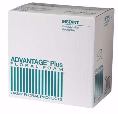 Picture of Oasis Advantage Plus Floral Foam (36 Pack)