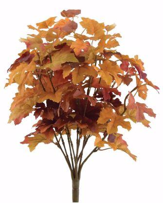 Picture of 16 Inch Rust Maple Bush x 9