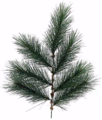 "Picture of 19"" Needle Pine Spray x 7"