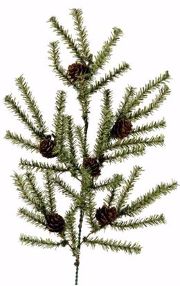 """Picture of Evergreen Spray-Pine (6 Stems, 20"""")"""