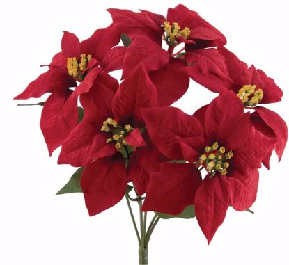 "Picture of Red Poinsettia Bush (15.5"")"