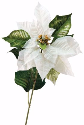 "Picture of White Poinsettia Stem (27"")"