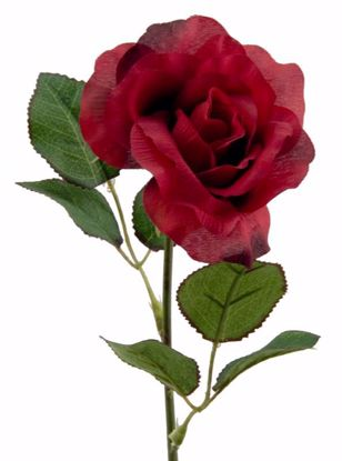 """Picture of 19.5"""" Red Single Rose Stem"""