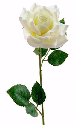 """Picture of 19.5"""" Cream Single Rose Stem"""