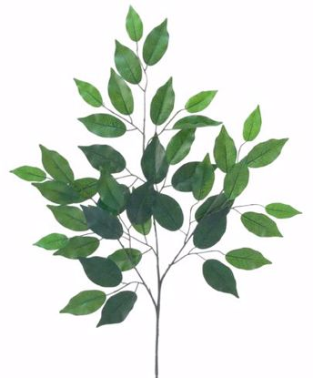 """Picture of 21"""" Ficus Spray  (GR 72001)"""