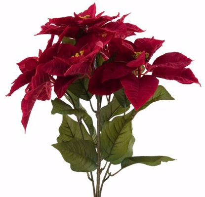 """Picture of Red Poinsettia Bush (20"""", 5 Stems)"""
