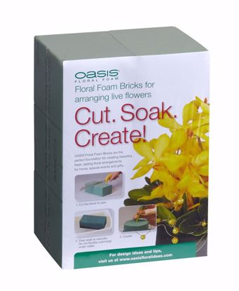 Picture of Oasis Standard Foam Maxlife (6 Pack)