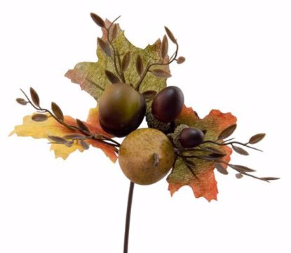 """Picture of 11"""" Pear-Acorn-Chestnut Pick"""
