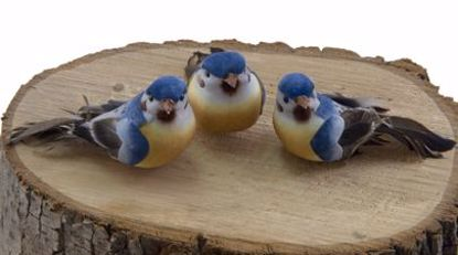 Picture of Mushroom Blue Birds with Wire (3 Assorted Birds)