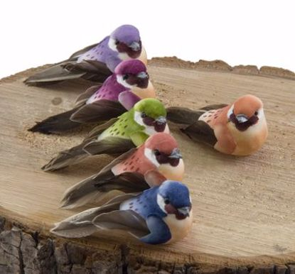 Picture of Mushroom Birds with Wire (6 Assorted Birds)