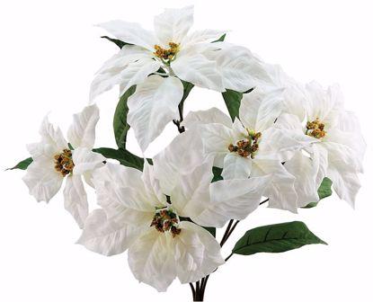 """Picture of White Poinsettia Bush (18"""", 5 Stems)"""