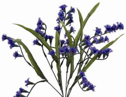 """Picture of Blue Fuchsia Bush (7 Stems, 14"""")"""