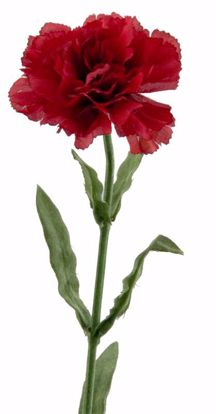 """Picture of 22"""" Red Single Carnation Stem"""