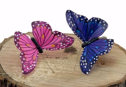 Picture of Two Assorted Hot Pink/Blue Monarch Butterflies w/Wire Wing Span