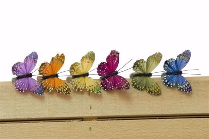 Picture of 6 Assorted Butterfly On Wire