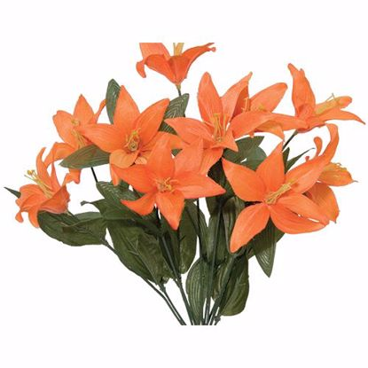 """Picture of 17"""" Tiger Lily Bush x 10"""