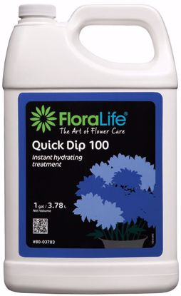 Picture of Floralife Quick Dip Liquid 100 Instant Hydrating Treatment - 1 Gallon Jug