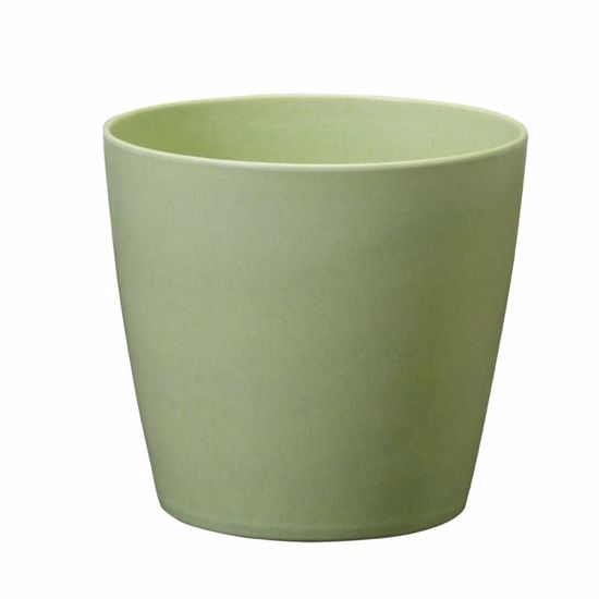 """Picture of Oasis ECOssentials 5"""" Cylinder - Celery"""