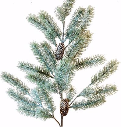 """Picture of Evergreen Spray-Snowy Angel Pine (29 Stems, 28"""")"""