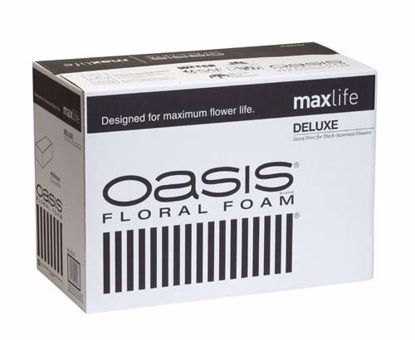 Picture of Oasis Deluxe Floral Foam Maxlife (48 Pack)
