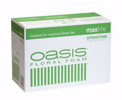 Picture of Oasis Springtime Floral Foam Maxlife (48 Pack)