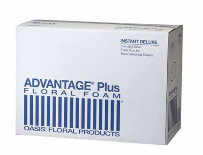 Picture of Oasis Advantage Plus Deluxe Floral Foam (48 Pack)