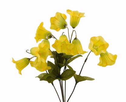 """Picture of 15"""" Yellow Bell Flower Bush x 6"""