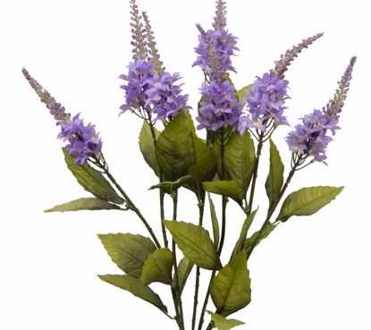 """Picture of Blue Spike Bush (5 Stems, 23"""")"""