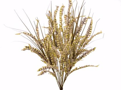 """Picture of Pheasant Feathers Onion Grass Bush (4 Stems, 23"""")"""
