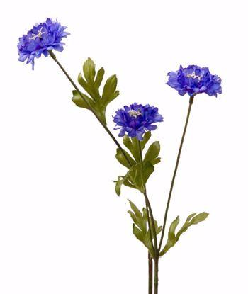 "Picture of Blue Corn Flower Stem (26"")"