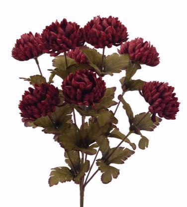 """Picture of 15.5"""" Burgundy Ball Mum Bush"""