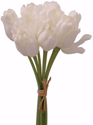 """Picture of Cream Tulip  Bundle (11.5"""")"""