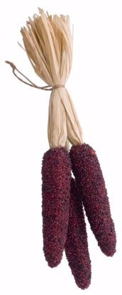 """Picture of Brown Corn Cob Decoration (with Hanger)-14"""""""