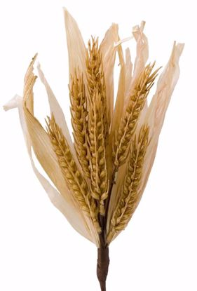 """Picture of 11"""" Wheat Pick"""