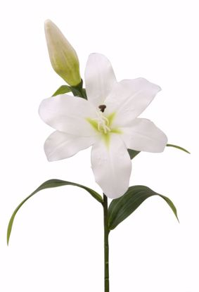 """Picture of 19"""" Cream Tiger Lily Stem"""