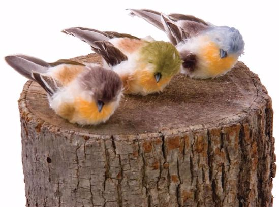 """Picture of 3 Assorted 3.5"""" Birds w/Clips"""
