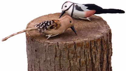 """Picture of 2 Assorted 6"""" Woodpeckers w/Clips"""