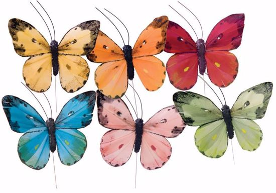 Picture of 6 Assorted Butterflies