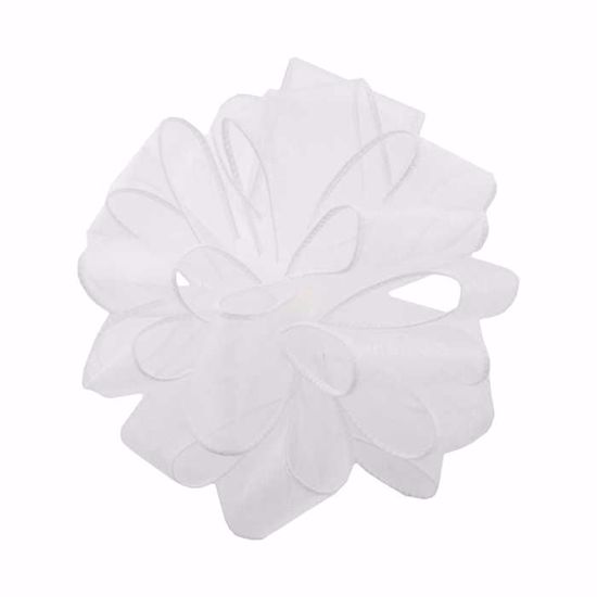 Picture of #9 Deluxe Sheer Wired Ribbon - White