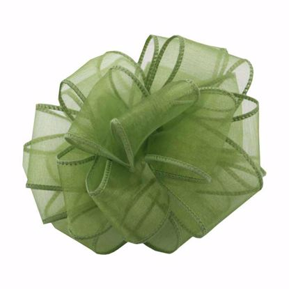 Picture of #9 Deluxe Sheer Wired Ribbon - Kiwi