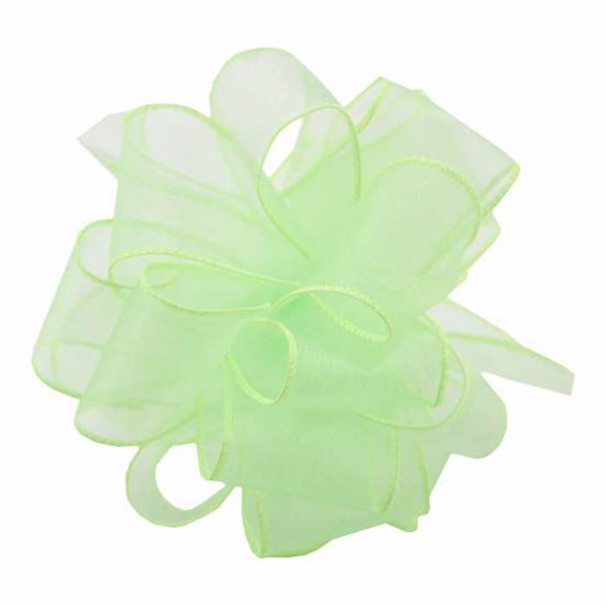 Picture of #9 Deluxe Sheer Wired Ribbon - Lime
