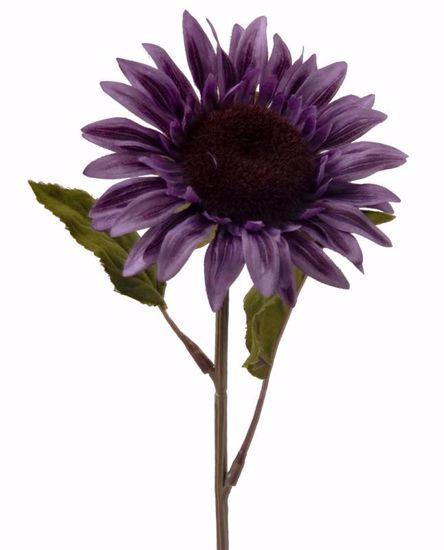 "Picture of 28"" Dk Purple Sunflower Stem"