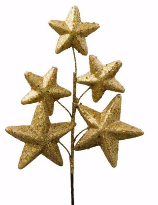 "Picture of 12"" Gold Glitter Star Pick"