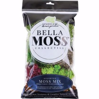 Picture of Preserved Moss Mix