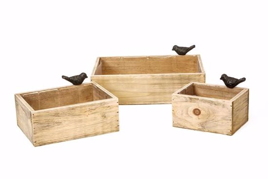 Picture of Natural Wood Crate Set w/Bird