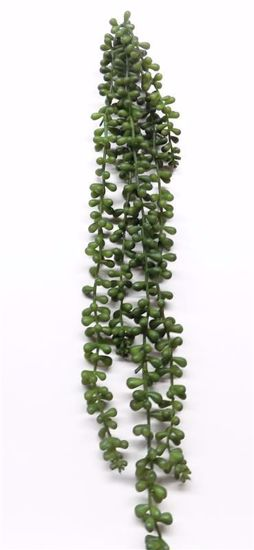 """Picture of 24"""" String of Pearls"""