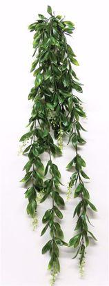 "Picture of 37"" Magnolia Lvs Bush Vine x 9"