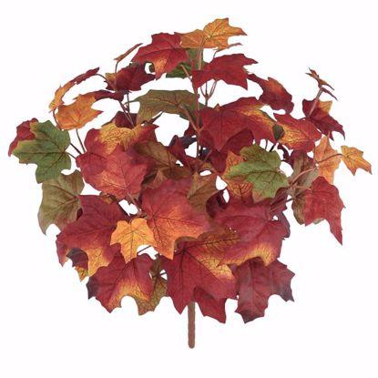 "Picture of Autumn Leaves Maple Bush (7 Stems, 17"")"